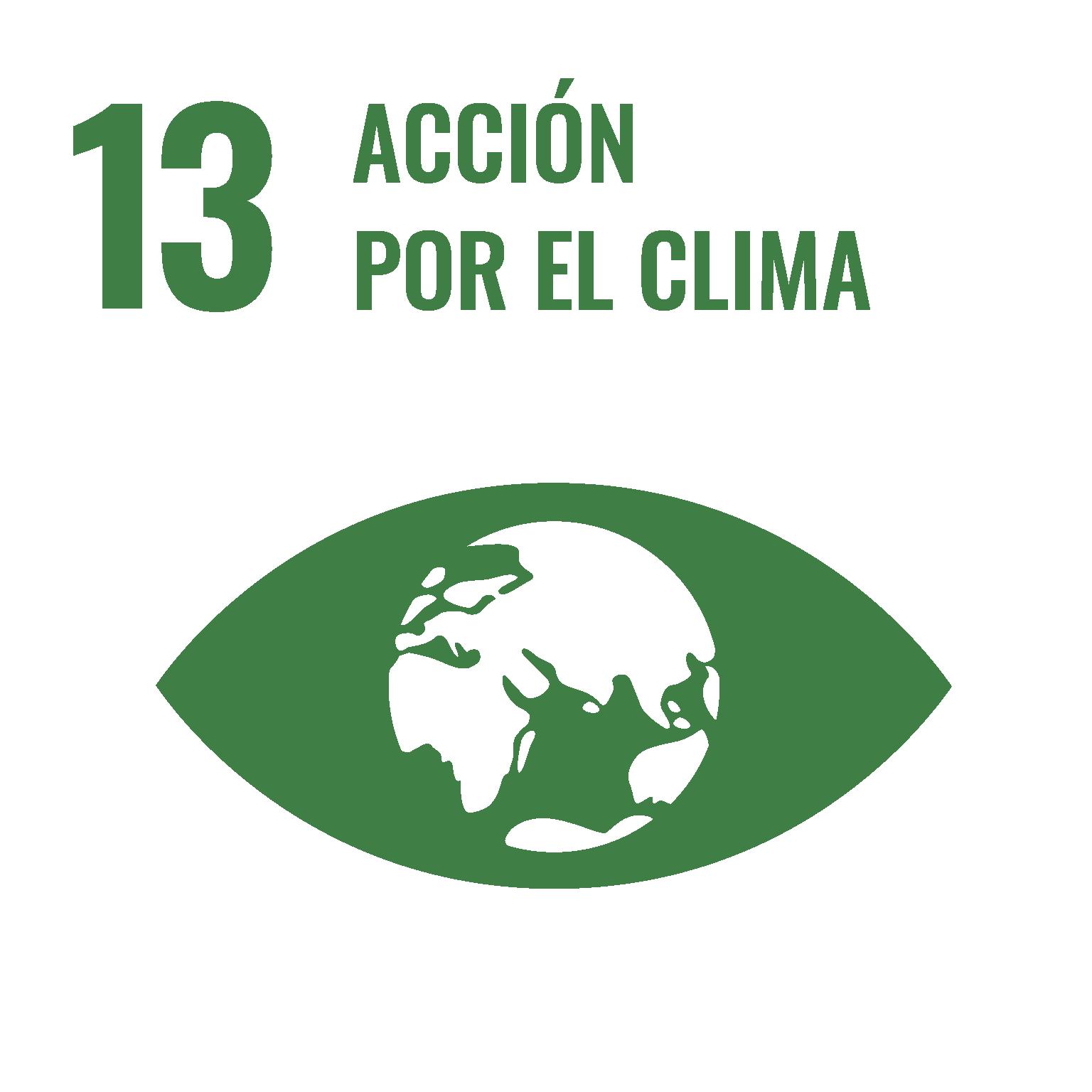 Objetivos ONU acción por el clima