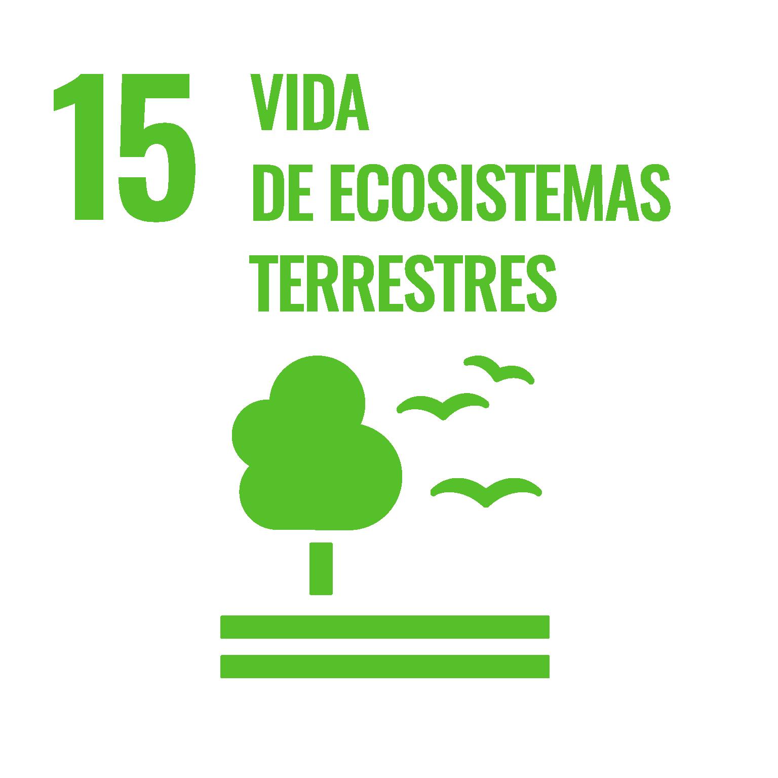Objetivos ONU vida de ecosistemas terrestres